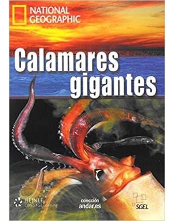 Calamares gigantes C1+ DVD...
